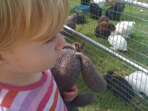 Loving the baby animals