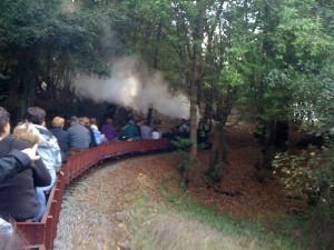 Miniature Steam Trains
